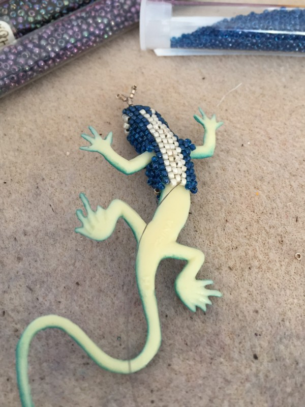 Blue-Lizard-Underbelly